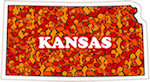 State of Kansas Magnets